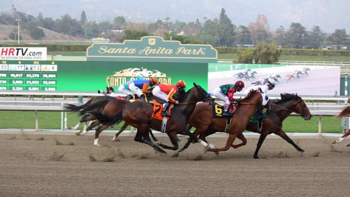 Fatal Horse Accidents Reason for Santa Anita Shutdown