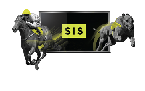 Kinna Patel Appointed As Head Of Software Delivery For SIS