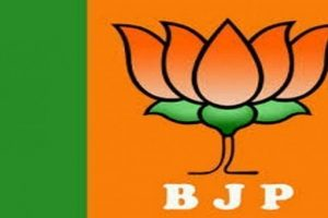 BJP Trying To Oust Congress State President: Goa Congress