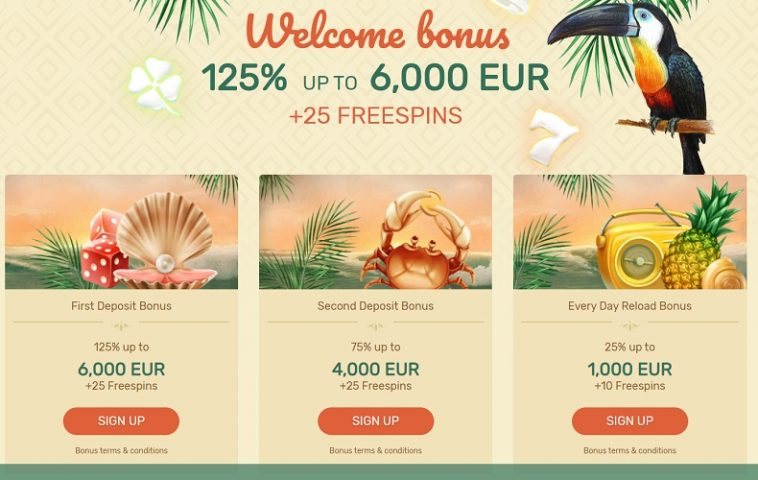 Paradise Online Casino's 100% Bonus Offer