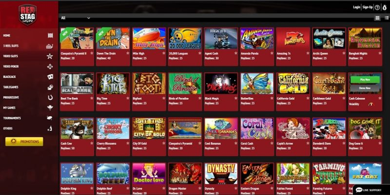 Red Stag Casino Games Offered