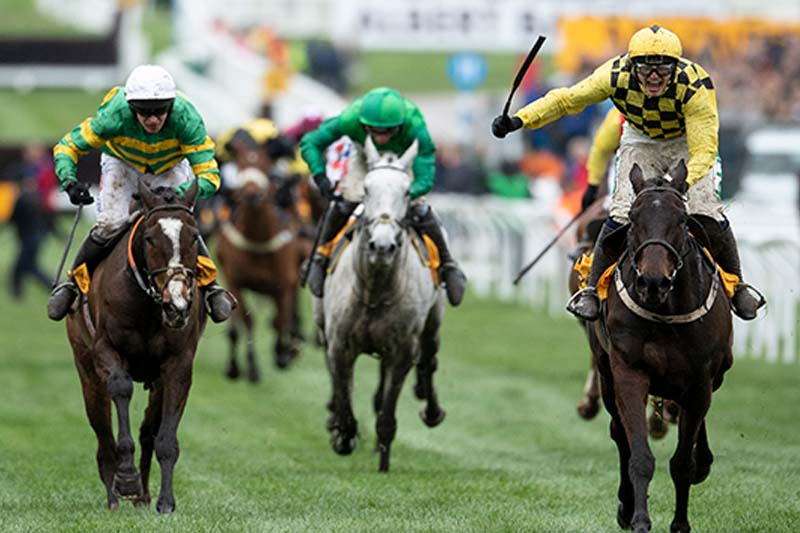 Betting Odds Slashed On Cheltenham Festival Final Day Ahead Of Gold Cup