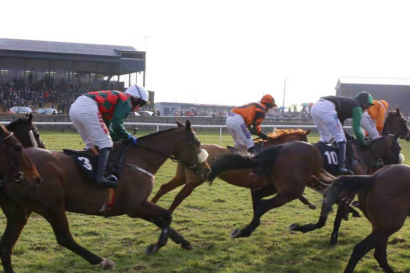 Thurles Horse Racing Revenue Increases Fourfold