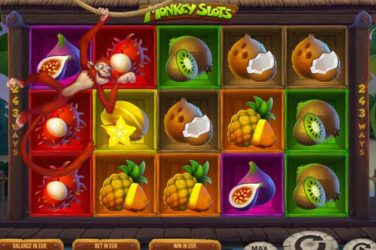 Monkey Slots - New Slot Release By SYNOT Games + Rating