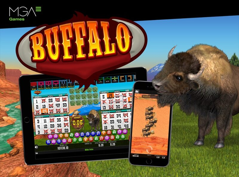 Buffalo Bingo By MGA Games Out Now! The Wildest Video Bingo Around