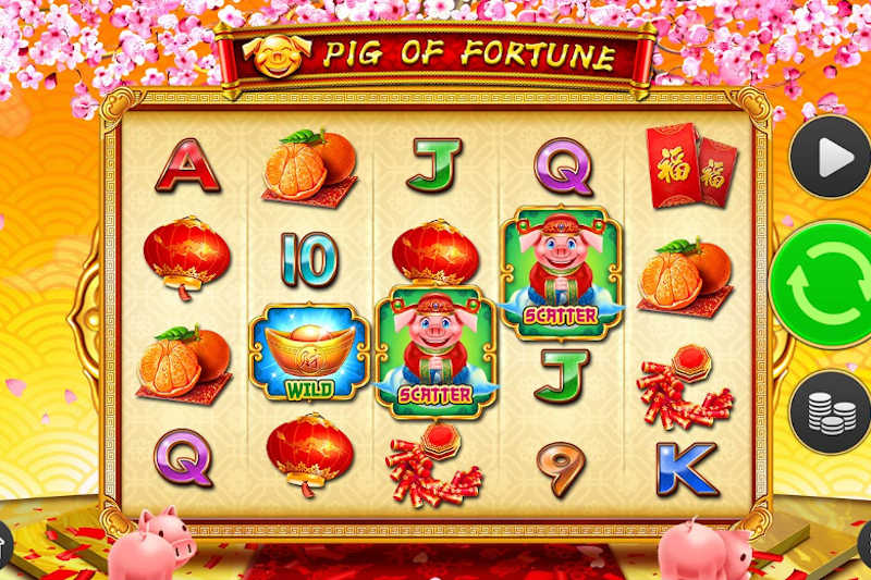 Pig Of Fortune - New Video Slot Release By D-Tech