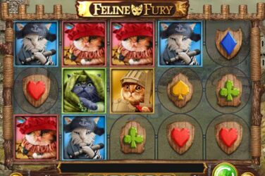 Play'n Go's Latest 20 Line Slot Feline Fury Has Landed
