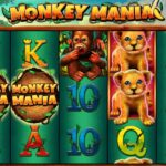 The new Monkey Mania slot by Gamomat is out now