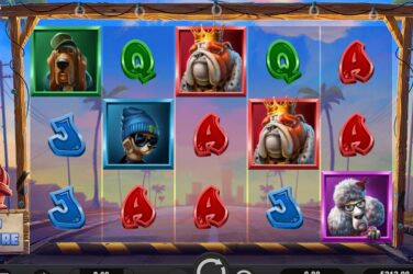 Relax Gaming is challenging slot players to be a top dog with its newest game